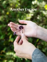 Another Escape #12 | Magazine | 9772051449008