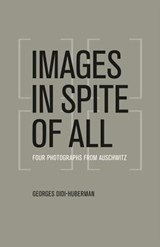 Images in Spite of All | Georges Didi-Huberman ; Shane B. Lillis |