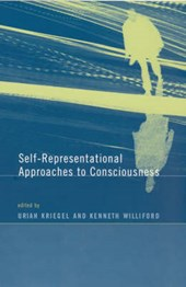 Self-Representational Approaches to Consciousness