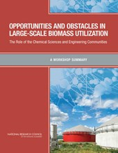 Opportunities and Obstacles in Large-Scale Biomass Utilization