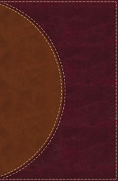 Amplified Reading Bible, Leathersoft, Brown, Thumb Indexed
