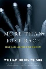 More than Just Race   William Julius Wilson  