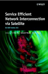 Service Efficient Network Interconnection via Satellite