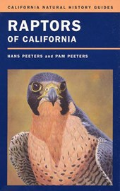 Raptors of California