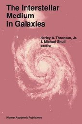 The Interstellar Medium in Galaxies