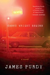 Cabot Wright Begins - A Novel