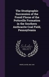 The Stratigraphic Succession of the Fossil Floras of the Pottsville Formation in the Southern Anthracite Coal Field, Pennsylvania