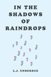 In the Shadows of Raindrops