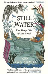 Still water: the deep life of the pond | John Lewis-Stempel |