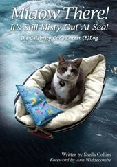 Miaow There! It's Still Misty Out at Sea!