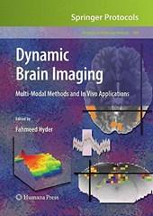 Dynamic Brain Imaging