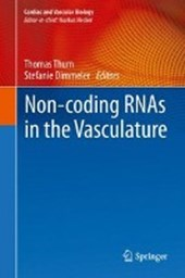 Non-coding RNAs in the Vasculature