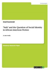 """""""Sula"""" and the Question of Social Identity in African American Fiction"""