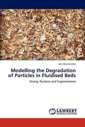 Modelling the Degradation of Particles in Fluidised Beds