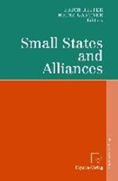 Small States and Alliances