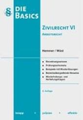 Hemmer: Basics Zivilrecht 6/Arb.