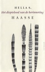 Het dieptelood van de herinnering | Hella S. Haasse |