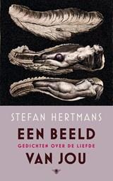 Een beeld van jou | Stefan Hertmans |