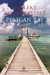 Pelican Bay   Nelleke Noordervliet  