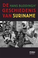 De geschiedenis van Suriname   Hans Buddingh'  