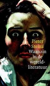Waanzin in de wereldliteratuur | Pieter Steinz |