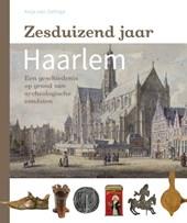 Zesduizend jaar Haarlem