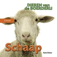 Schaap | Katie Dicker |