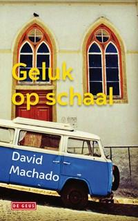 Geluk op schaal | David Machado |
