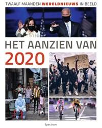 Het aanzien van 2020   Han van Bree  