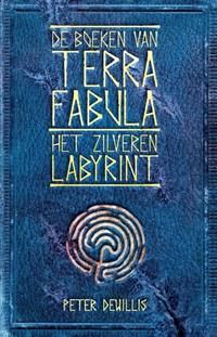 Het zilveren labyrint | Peter DeWillis |