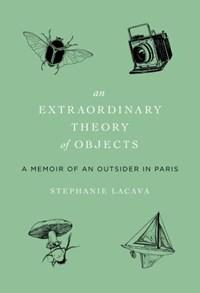 Extraordinary Theory of Objects   Stephanie LaCava  