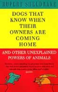 Dogs That Know When Their Owners Are Coming Home | Rupert Sheldrake |