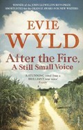 After the Fire, A Still Small Voice | Evie Wyld |