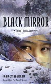 Black Mirror   Nancy Werlin  