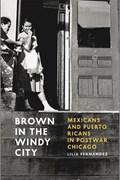 Brown in the Windy City   Lilia Fernandez  