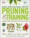 RHS Pruning and Training   Christopher Brickell ; David Joyce  