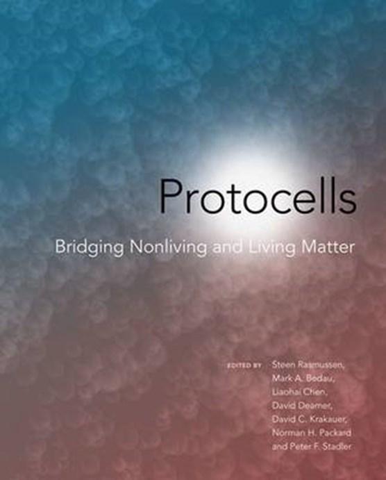 Protocells