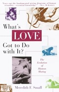 What's Love Got to Do with It?   Meredith Small  