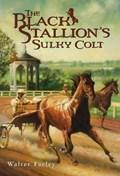 The Black Stallion's Sulky Colt   Walter Farley  