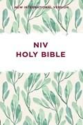 NIV, Outreach Bible, Paperback | Zondervan |
