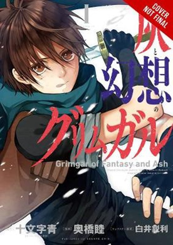 Grimgar of Fantasy and Ash, Vol. 2 (manga)