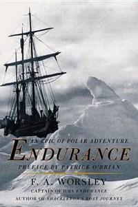 Endurance   Frank Arthur Worsley  