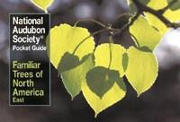 National Audubon Society Pocket Guide to Familiar Trees   National Audubon Society  