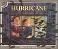 Hurricane   David Wiesner  