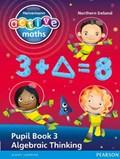 Heinemann Active Maths Northern Ireland - Key Stage 2 - Exploring Number - Pupil Book 3 - Algebraic Thinking   Keith, Lynda ; McClure, Lynne ; Sinclair, Amy ; Gorrie, Peter  
