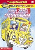Amazing Magnetism   Rebecca Carmi  