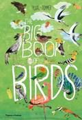 Big book of birds | Yuval Zommer |
