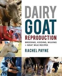 Dairy Goat Reproduction: Breeding, Birthing, and Milking + Goat Milk Recipes   Rachel Payne  