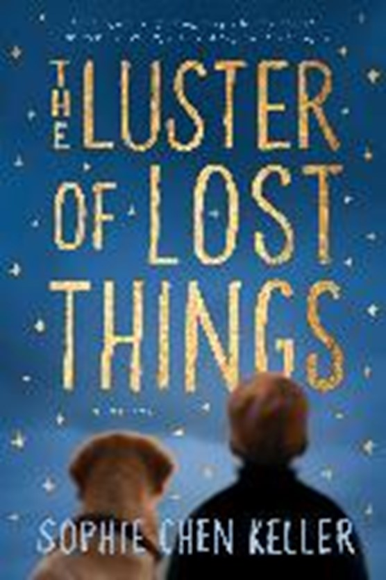 LUSTER OF LOST THINGS