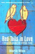 Red-tails in Love   Marie Winn  